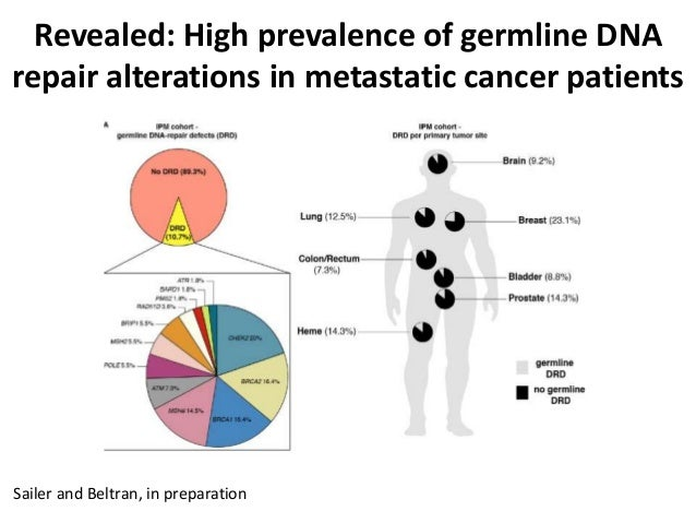 Sailer and Beltran, in preparation Revealed: High prevalence of germline DNA repair alterations in metastatic cancer patie...