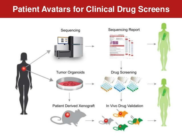 Patient Avatars for Clinical Drug Screens