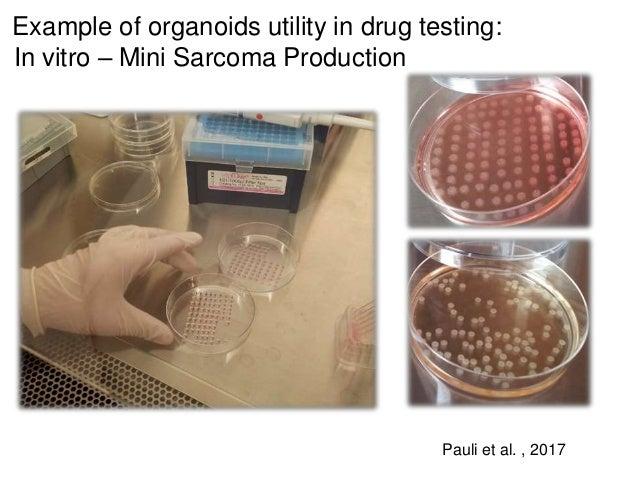 Example of organoids utility in drug testing: In vitro – Mini Sarcoma Production Pauli et al. , 2017