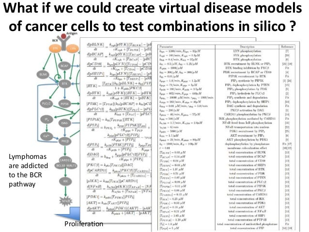 What if we could create virtual disease models of cancer cells to test combinations in silico ? Proliferation Lymphomas ar...