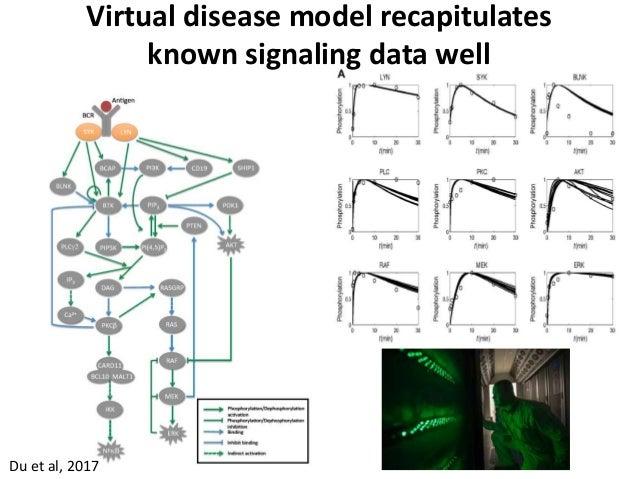 Du et al, 2017 Virtual disease model recapitulates known signaling data well