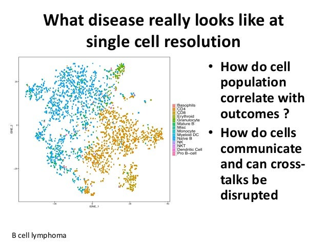 What disease really looks like at single cell resolution B cell lymphoma • How do cell population correlate with outcomes ...