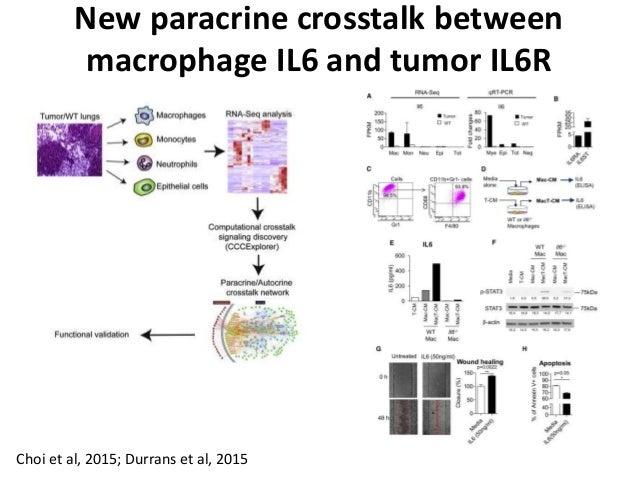 Choi et al, 2015; Durrans et al, 2015 New paracrine crosstalk between macrophage IL6 and tumor IL6R