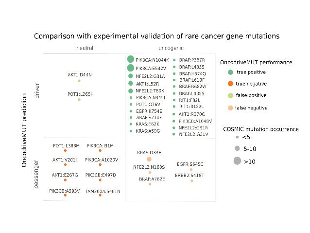 Hurdles to design cancer gene panels ● Laborious selection of genes/regions relevant for tumorigenesis in the cancer type ...