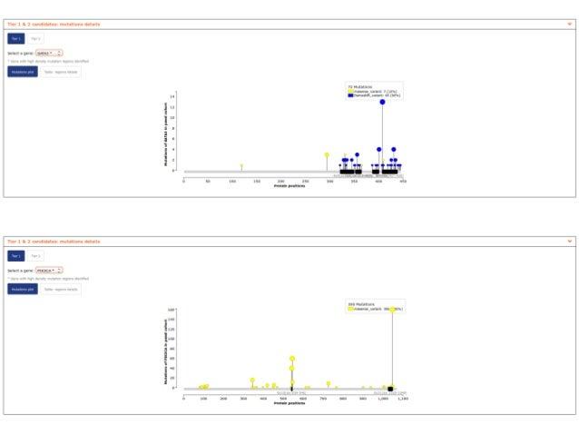 CDAC 2018 Gonzales-Perez interpretation of cancer genomes