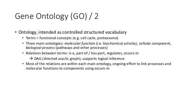 BiologicalProcess: DNArepair CellularComponent: Replicationfork CellularComponent: Single-strandbreak containingDN...
