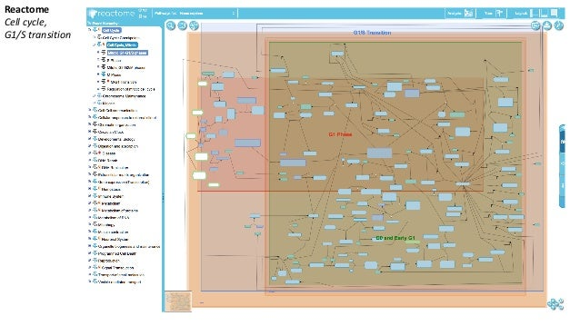 ResourcestoDownloadGene-sets BaderLab (UniversityofToronto) http://baderlab.org/GeneSets • GeneOntology;Reactome,P...