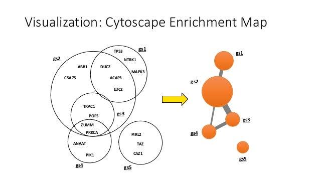 Example:Differentialexpressionafterestrogentreatmentofbreastcancercells,GSEAcompetitivegene-setanalysis