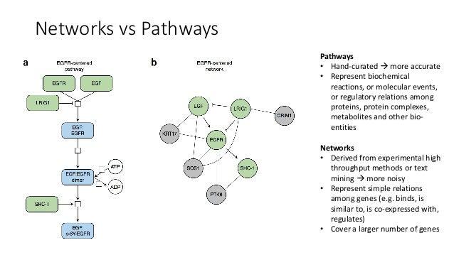 NetworkAnalysisOverview Mostcommonanalysistypes: • Subnetworkconstructionfromseedgenesà GeneMANIA • Networkclus...
