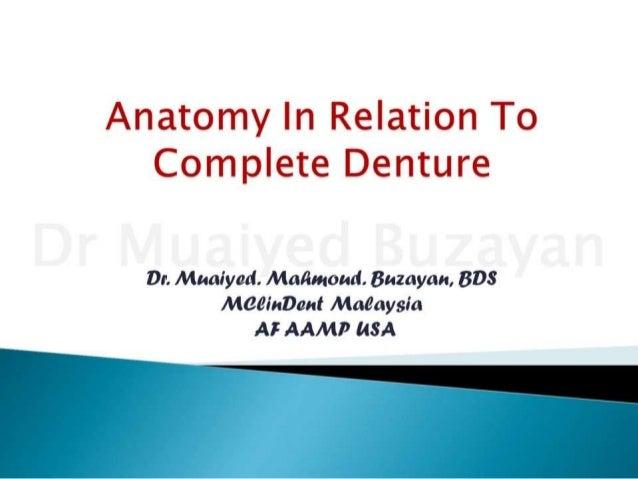 Cd anatomical landmarks 2nd yr