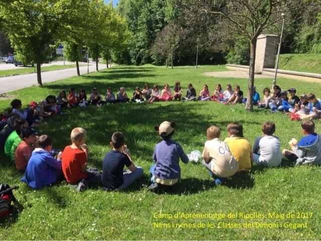 Camp d'Aprenentatge del Ripollès. Maig de 2017 Nens i nenes de les Classes del Dimoni i Gegant