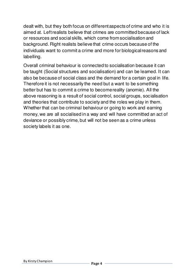 Essay about crimes