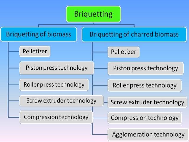 Biomass Energy Technologies Prof K R Shrestha