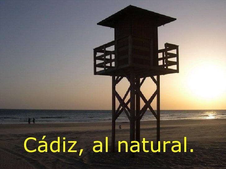 Cádiz, al natural.