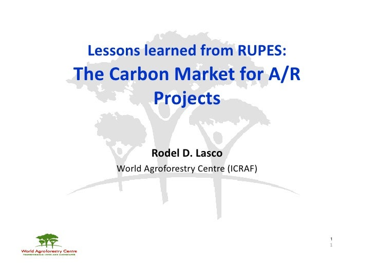 Lessons learned from RUPES:  The Carbon Market for A/R             Projects                    Rodel...