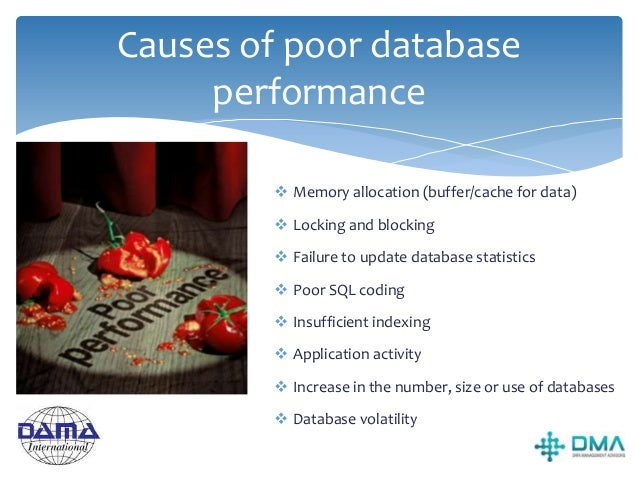 Data Technology Architecture  DBMS software  Relational database management utilities  Data modelling and management so...