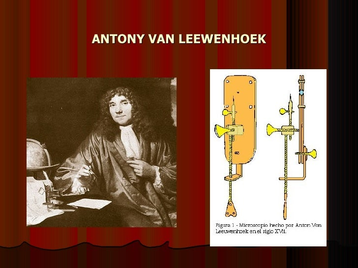 ANTONY VAN LEEWENHOEK