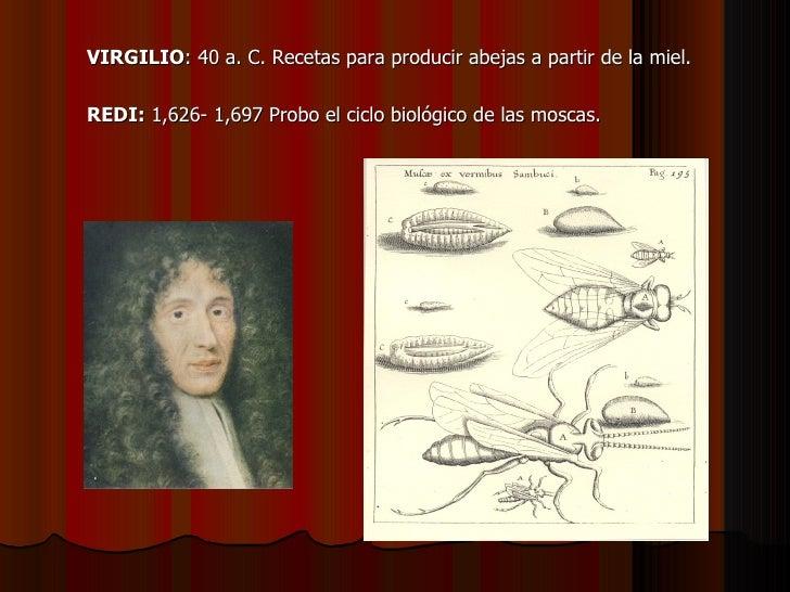 <ul><li>VIRGILIO : 40 a. C. Recetas para producir abejas a partir de la miel. </li></ul><ul><li>REDI:  1,626- 1,697 Probo ...