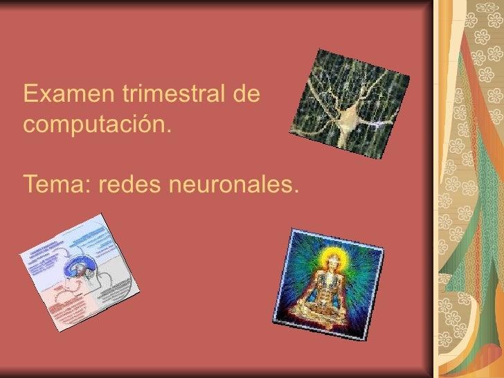 Examen trimestral de computación. Tema: redes neuronales.