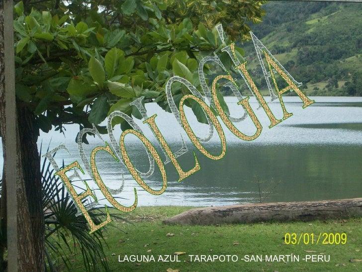 ECOLOGÍA  LAGUNA AZUL . TARAPOTO -SAN MARTÍN -PERU