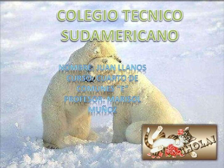 """COLEGIO TECNICO SUDAMERICANO<br />Nombre: Juan llanos<br />Curso: cuarto de comunes """"e""""<br />Profesor: Marisol muñoz<br />"""