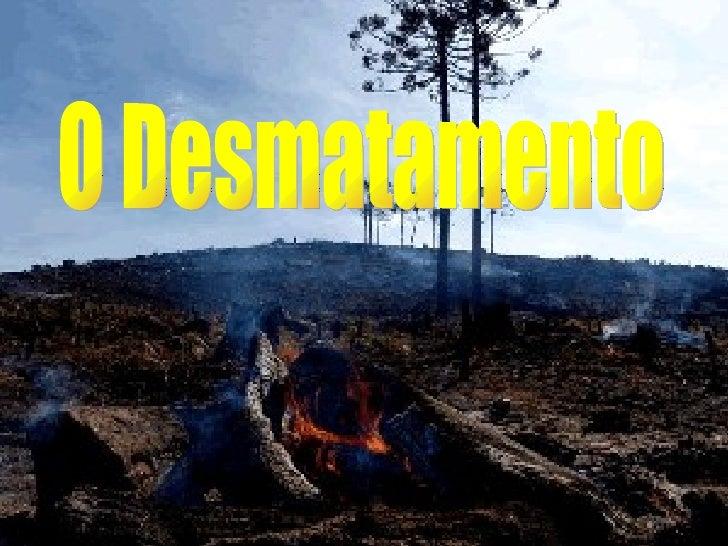 O Desmatamento
