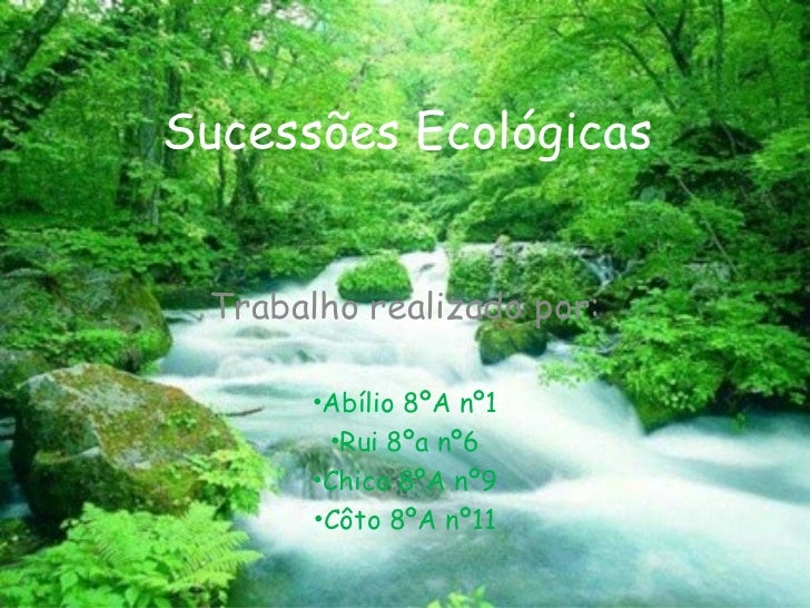 Sucessões Ecológicas <ul><li>Trabalho realizado por: </li></ul><ul><li>Abílio 8ºA nº1 </li></ul><ul><li>Rui 8ºa nº6 </li><...
