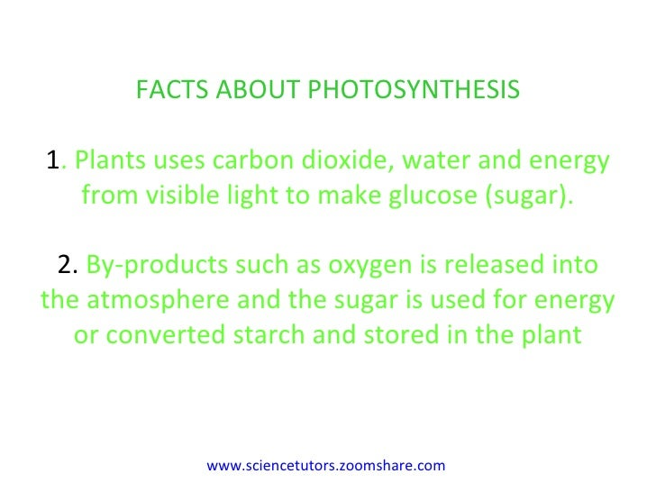 photosynthesis essay  veterinariancolleges radiation photosynthesis