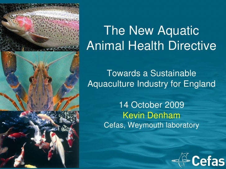 The New Aquatic Animal Health Directive      Towards a Sustainable Aquaculture Industry for England          14 October 20...