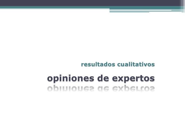 resultados cualitativos  opiniones de expertos