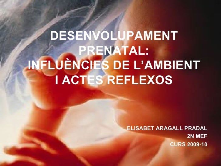 DESENVOLUPAMENT PRENATAL: INFLUÈNCIES DE L'AMBIENT I ACTES REFLEXOS ELISABET ARAGALL PRADAL 2N MEF CURS 2009-10