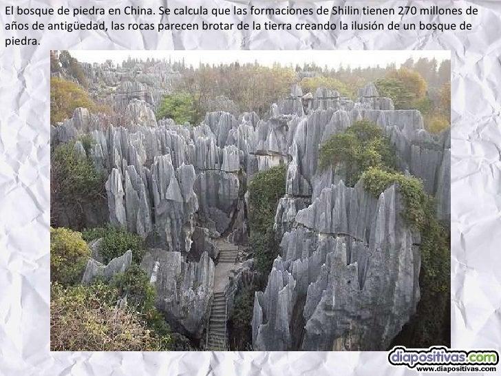 El bosque de piedra en China. Se calcula que las formaciones de Shilin tienen 270 millones de años de antigüedad, las roca...