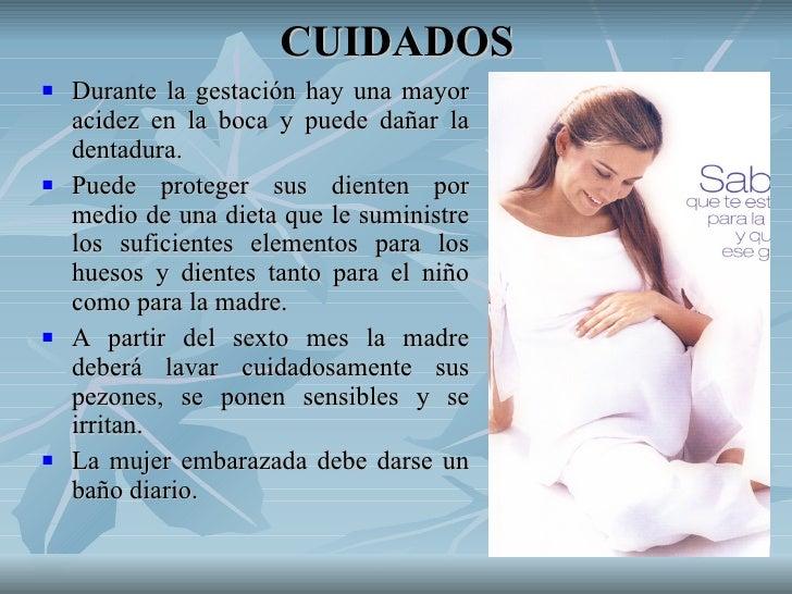 Mujer embarazada - Cuidados de una hortensia ...