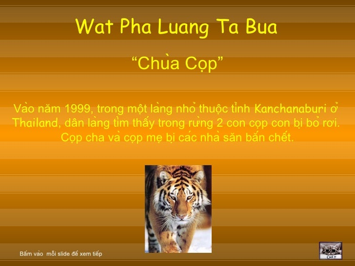 """Wat Pha Luang Ta Bua   """" Chùa Cọp """" Vào năm 1999, trong một làng nhỏ thuộc tỉnh  Kanchanaburi  ở  Thailand , dân ..."""