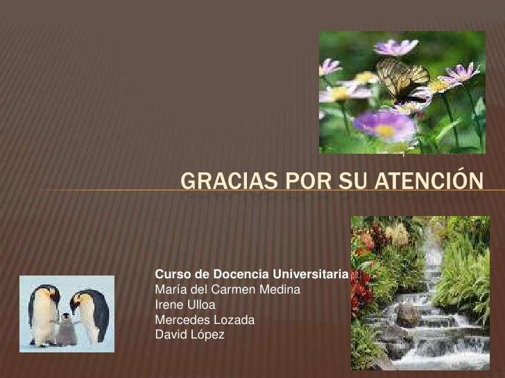 Fin de la presentación<br />Gracias por su atención<br />Curso de Docencia Universitaria<br />María del Carmen Medina<br /...