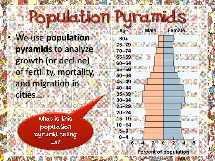 Understanding Population Pyramids Slide 2