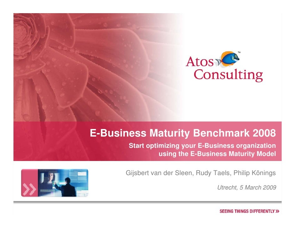 E-Business Maturity Benchmark 2008        Start optimizing your E-Business organization                  using the E-Busin...