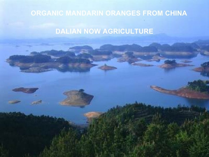 ORGANIC MANDARIN ORANGES FROM CHINA DALIAN NOW AGRICULTURE