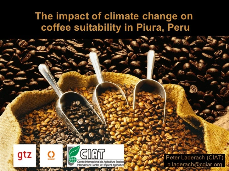 The impact of climate change on  coffee suitability in Piura, Peru Peter Laderach (CIAT) [email_address]