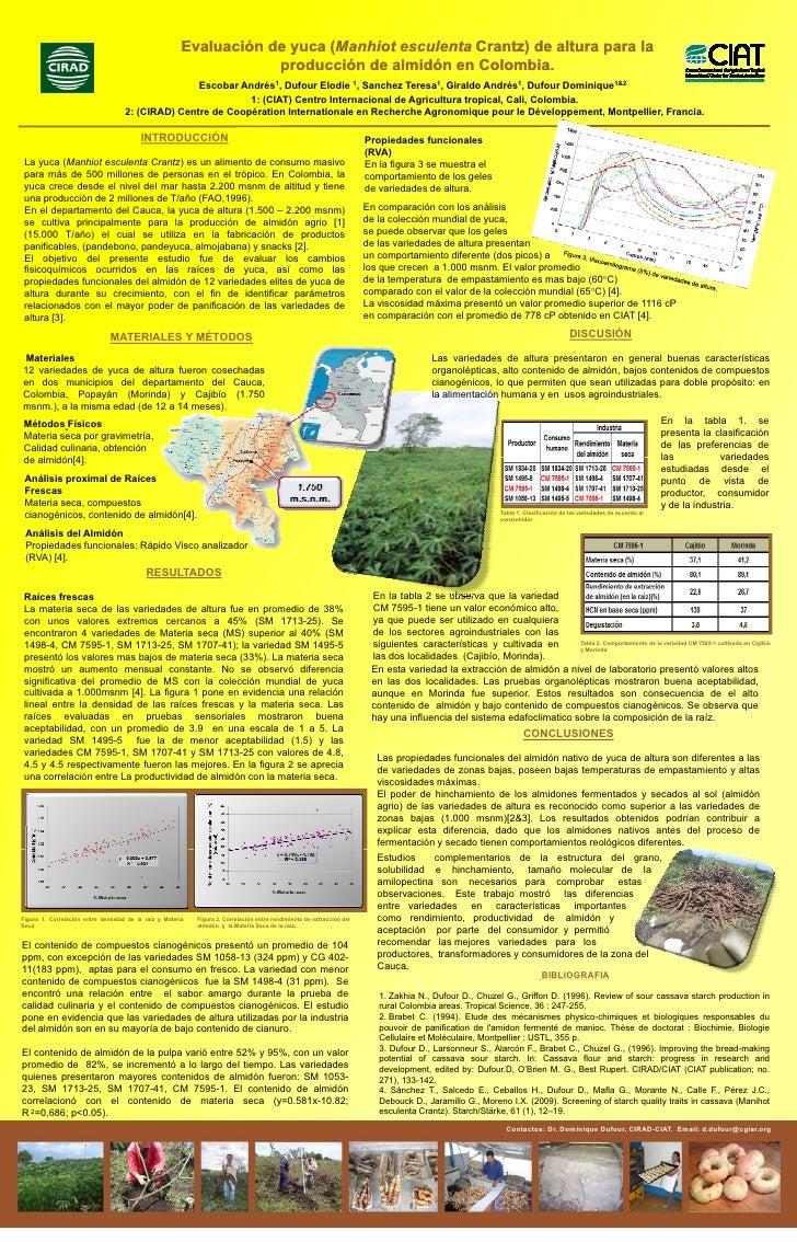 Evaluación de yuca (Manhiot esculenta Crantz) de altura para la                                                           ...