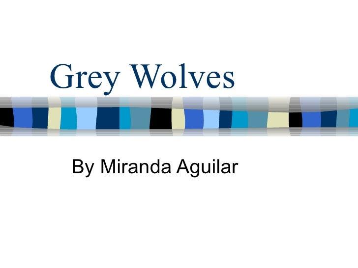 Grey Wolves By Miranda Aguilar