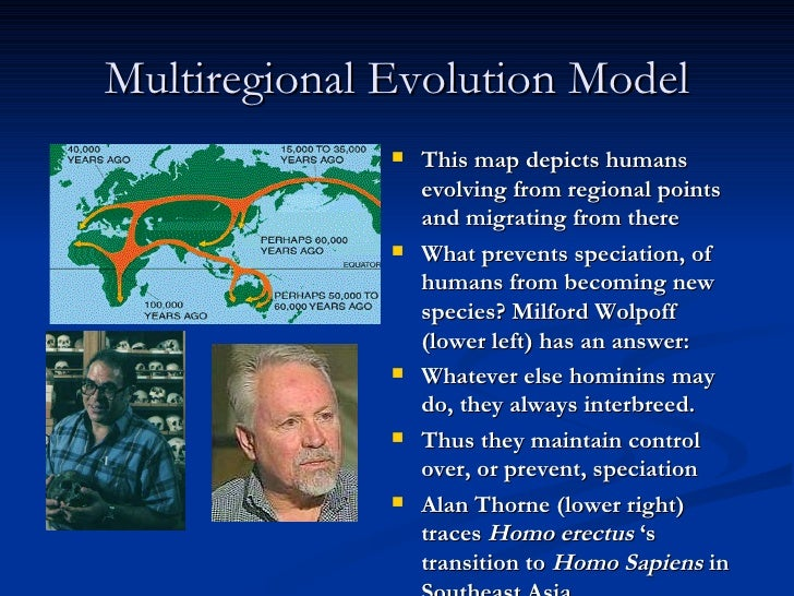 multiregional thesis Multi-regional continuity: the fossil evidence with regards to the multi-regional continuity model of human evolution, there is without a doubt a preponderance of fossil data that supports.