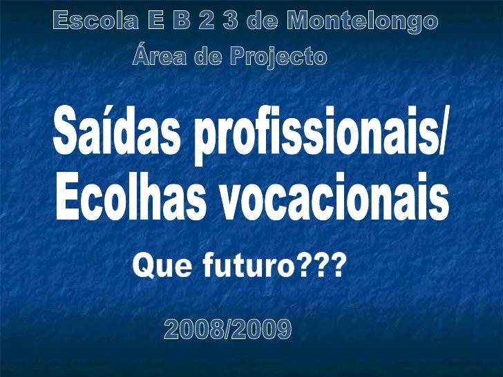 Escola E B 2 3 de Montelongo Saídas profissionais/ Ecolhas vocacionais Que futuro??? 2008/2009 Área de Projecto