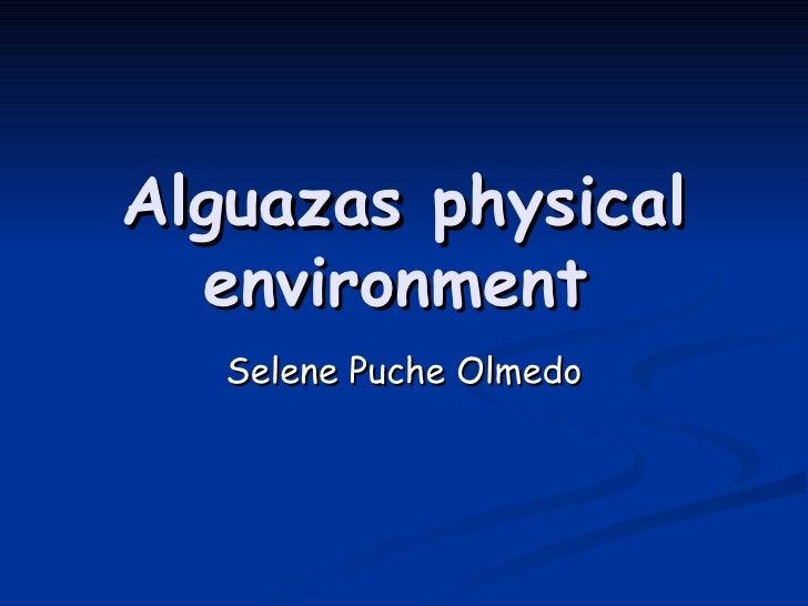 Alguazas physical environment   Selene Puche Olmedo