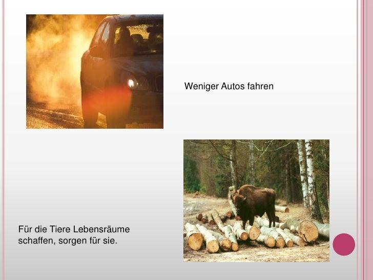 Weniger Autos fahren<br />Für die TiereLebensräumeschaffen, sorgenfürsie.<br />