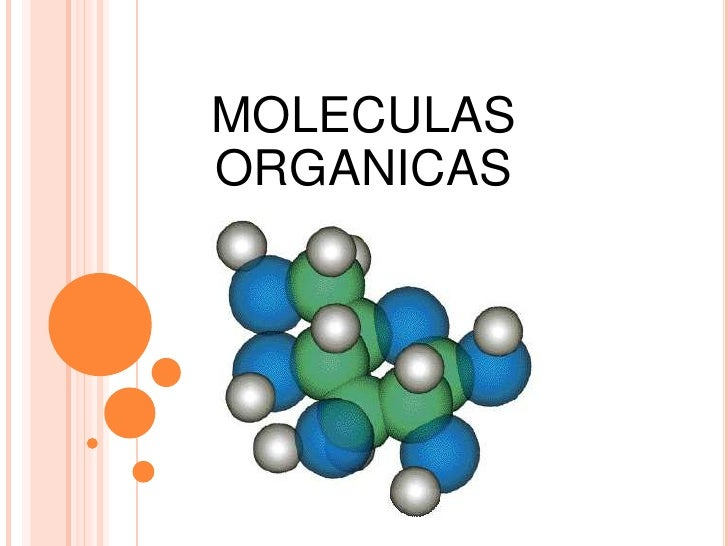 MOLECULAS ORGANICAS<br />