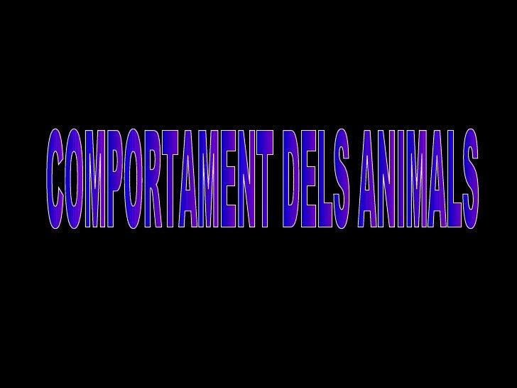COMPORTAMENT DELS ANIMALS