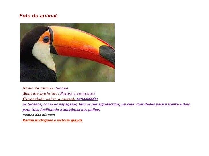 Nome do animal:  tucano Alimento preferido:  Frutos e sementes Curiosidade sobre o animal:  curiosidade: os tucanos, como ...
