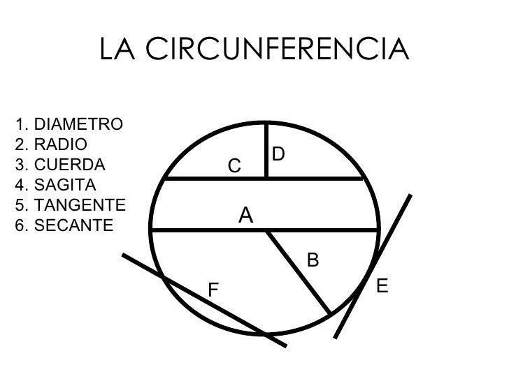 LA CIRCUNFERENCIA <ul><li>DIAMETRO </li></ul><ul><li>RADIO </li></ul><ul><li>CUERDA </li></ul><ul><li>SAGITA </li></ul><ul...
