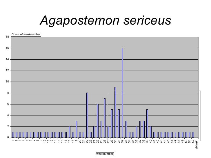 The Weekly Phenology of Bees of the Mid-Atlantic States:  MD, VA, WV, DC, PA, DE Sam Droege [email_address]